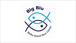 big blu dive center mafia tanziania, safari tanzania e mare